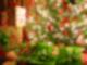 201210 Warum Darum Geschenke
