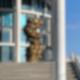Werdendes vorm Bundestag in Mitte