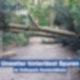 Unwetter hinterlässt Spuren im Volkspark Humboldthain - 22.07.2020